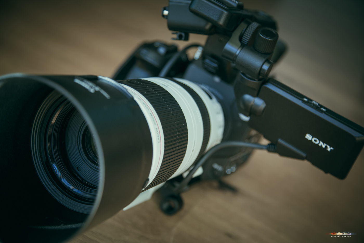 AUTrenalinMEDIA_equipment_canon400mm_foto_kücher-3312-2.jpg