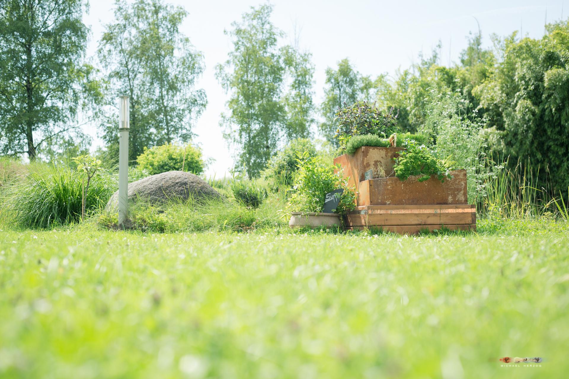 Garten_MichaelHerzog-1446.jpg