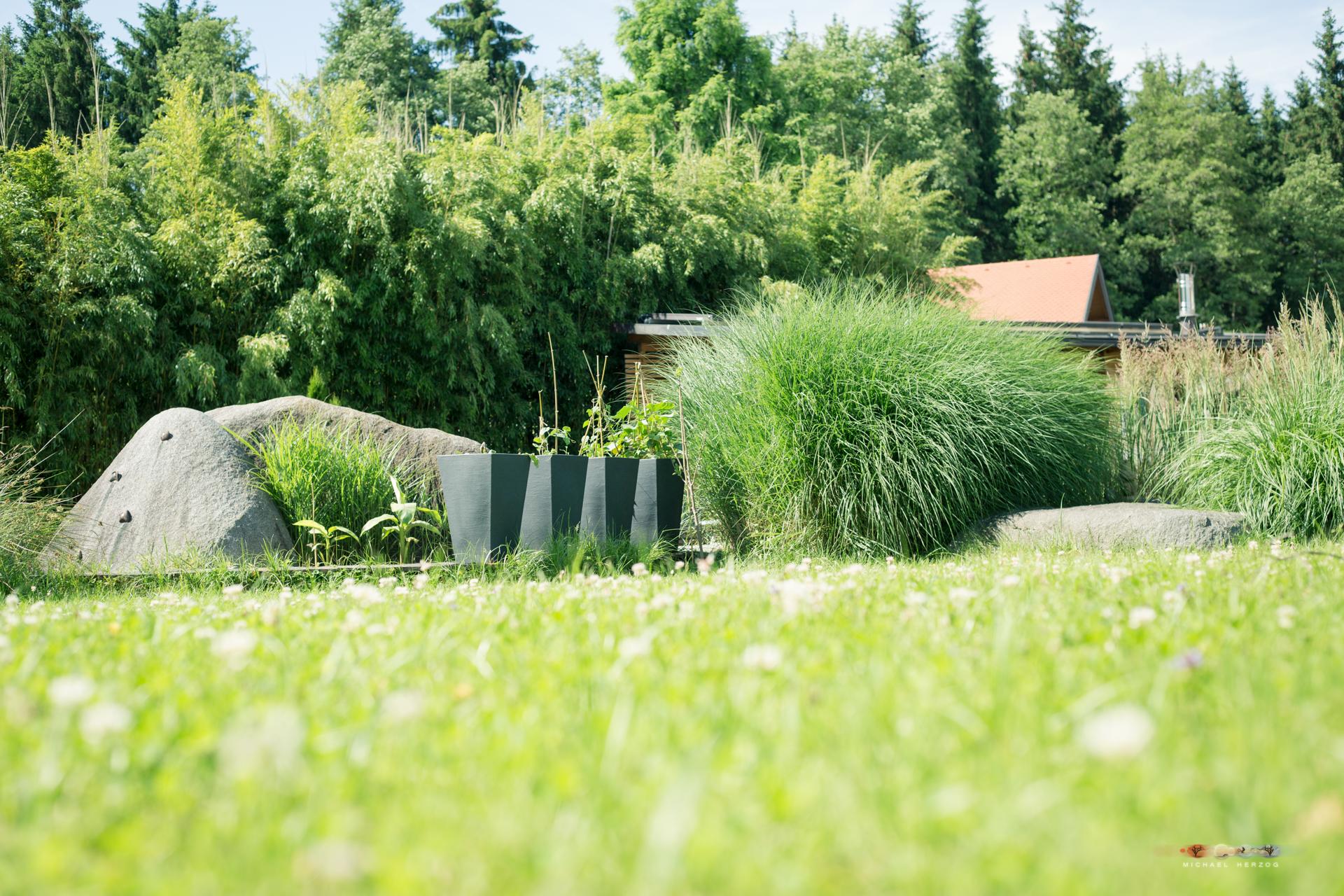 Garten_MichaelHerzog-1465.jpg