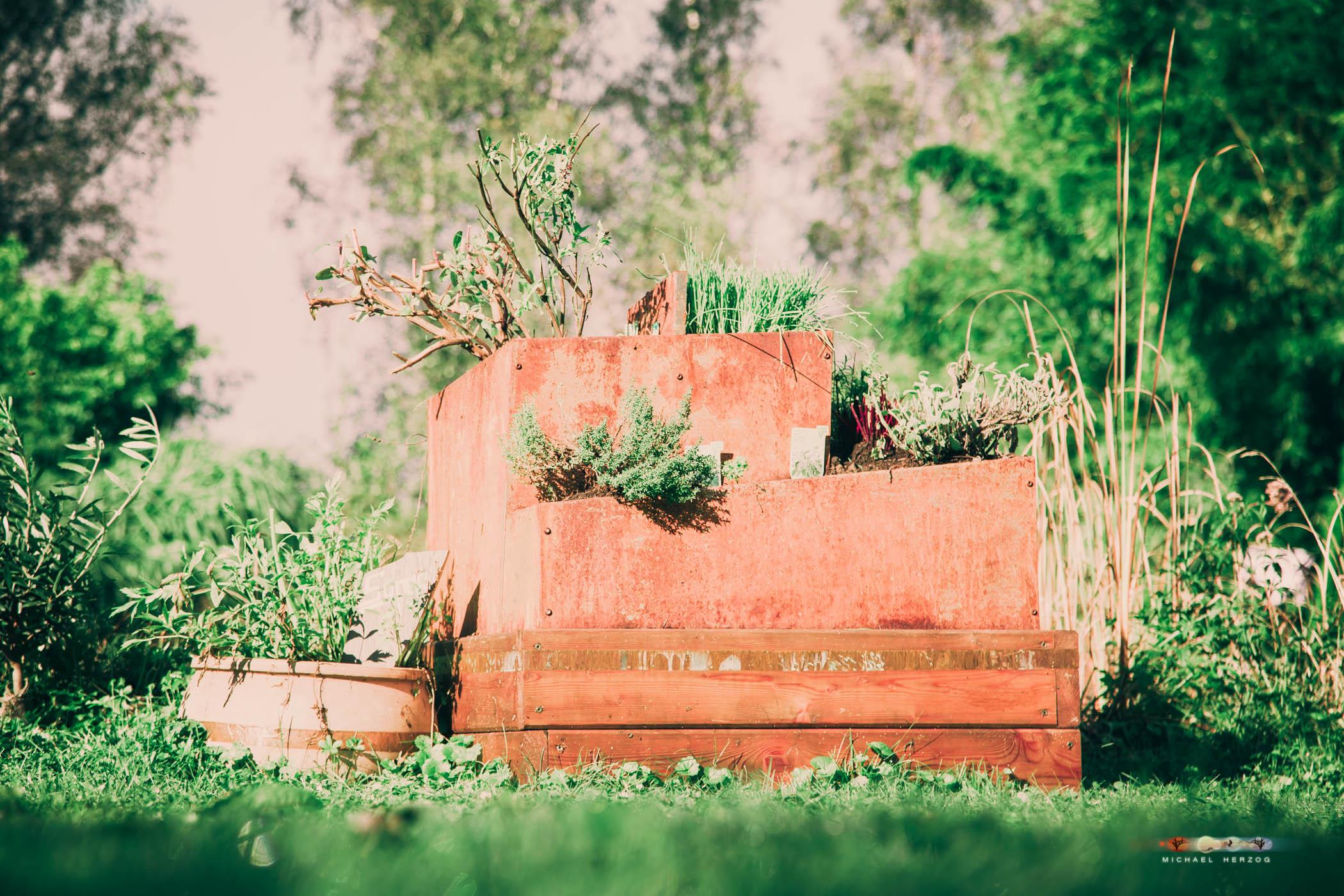 Garten_Herbst_MichaelHerzog-4453.jpg