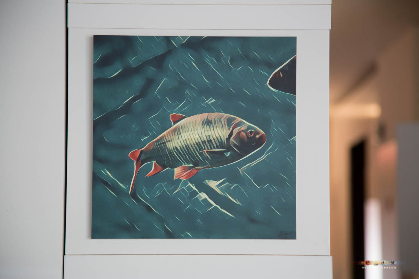 ARTquadrat216_Fish1_NatureSeries_MichaelHerzog-6720.jpg