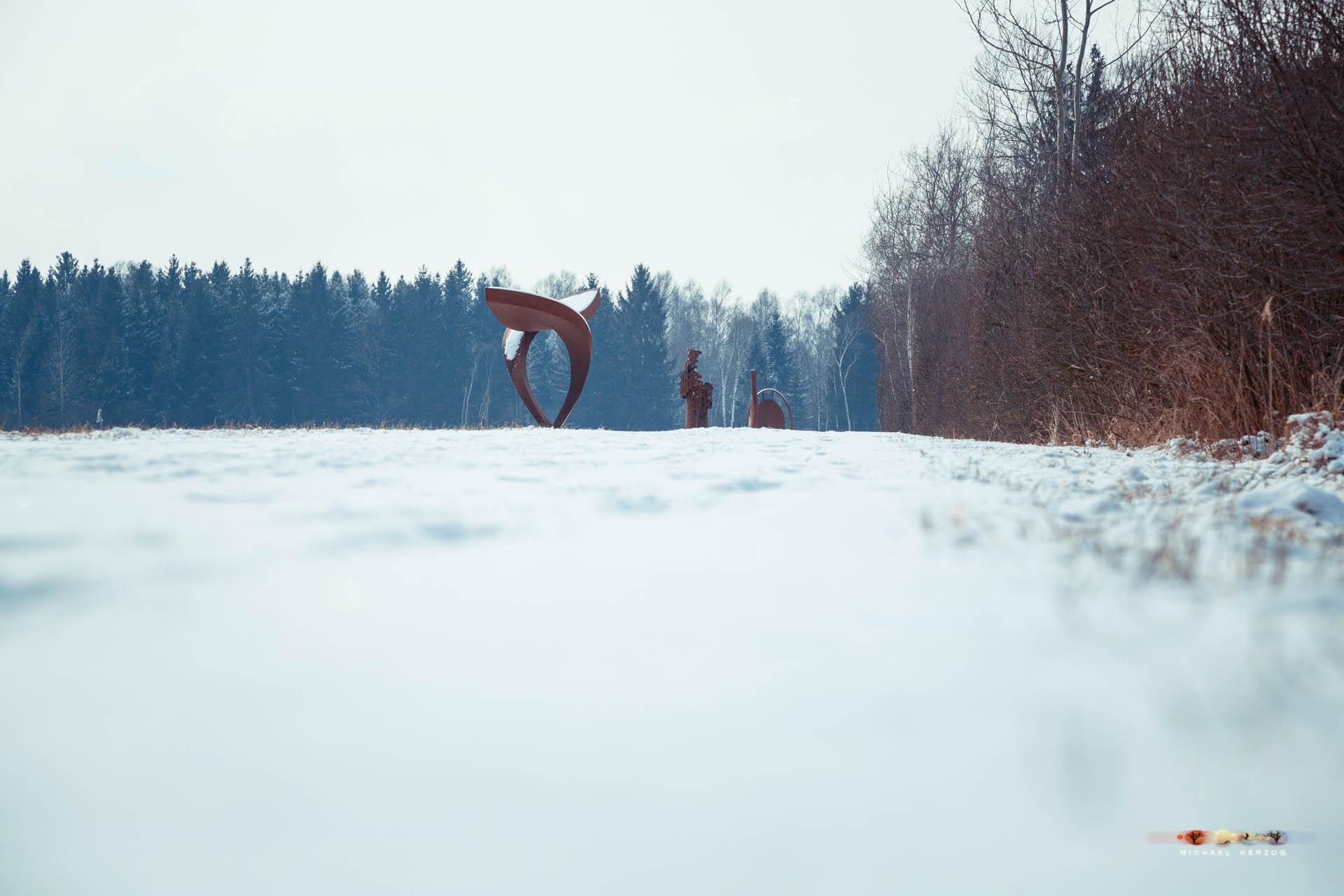 Weidmoos_SibirischeKälte_Frühling2018_MichaelHerzog-2317.jpg
