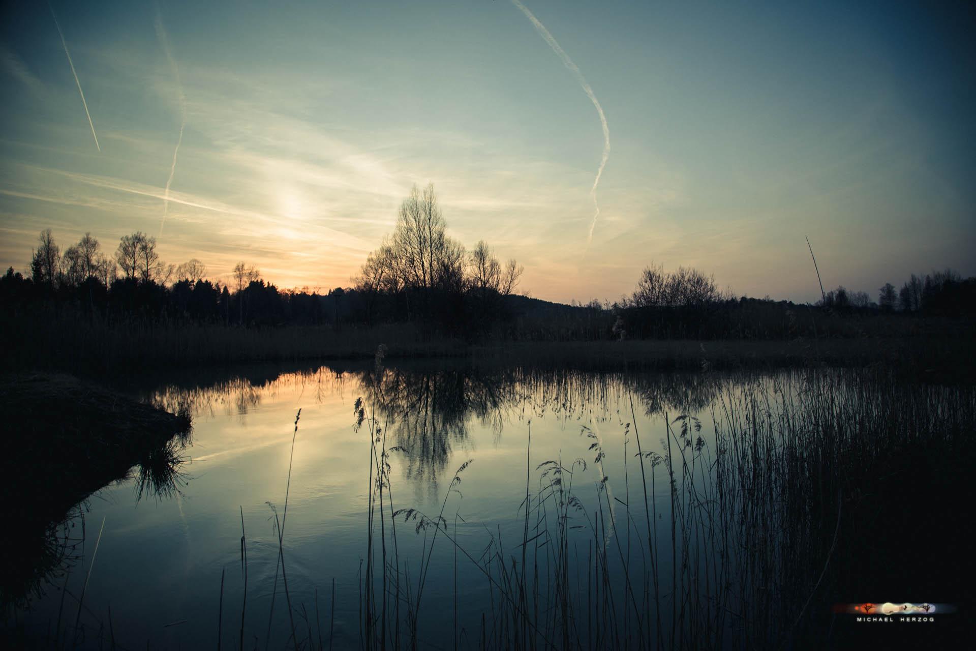 Weidmoos-Abend_Frühling2018_MichaelHerzog-2889.jpg