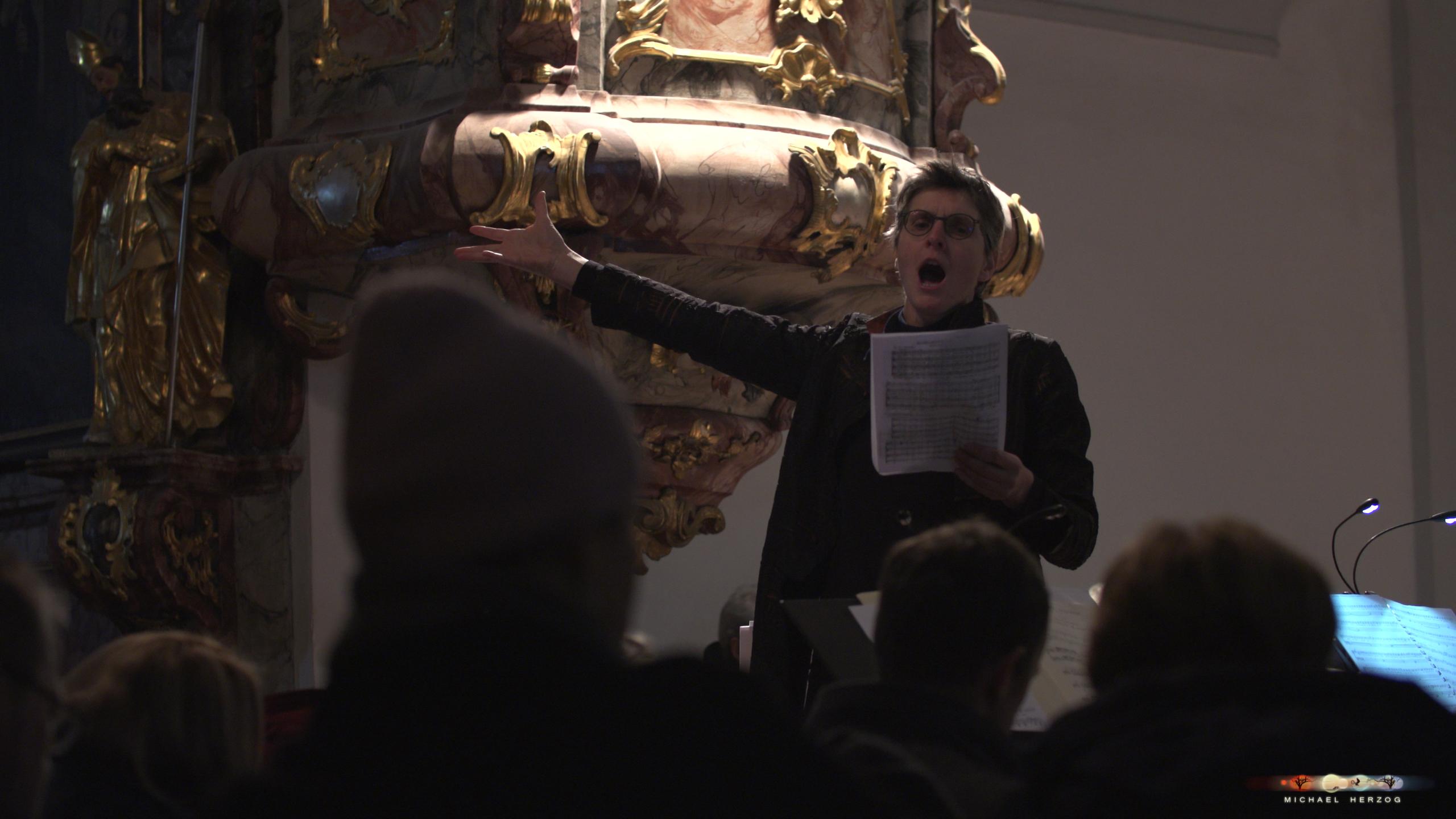 ArnsdorferSternstunden_Konzertabend1-mit-PhilharmonieSalzburg_Screenshot_MichaelHerzog-17.jpg