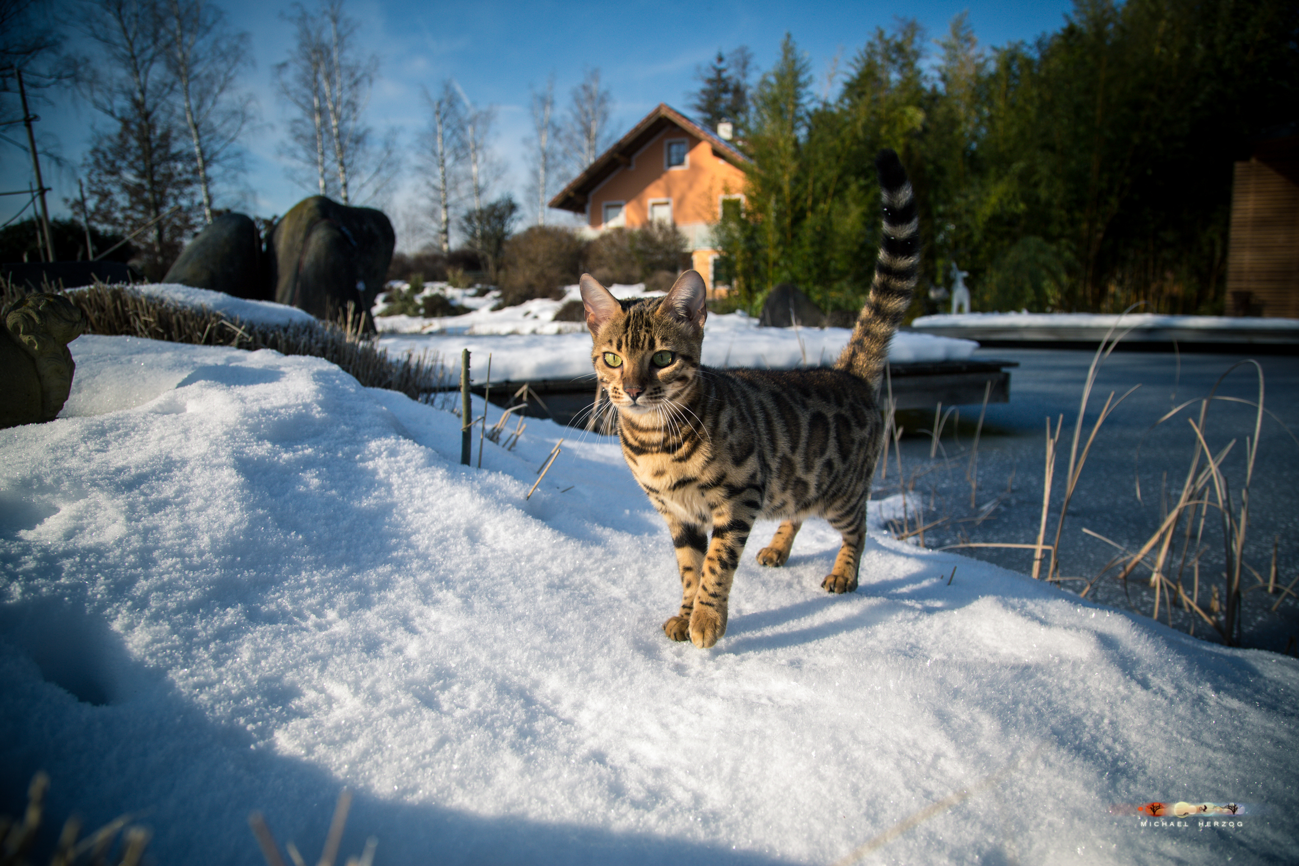 BALUARI_Winter2019_Garten_MichaelHerzog-8517.jpg