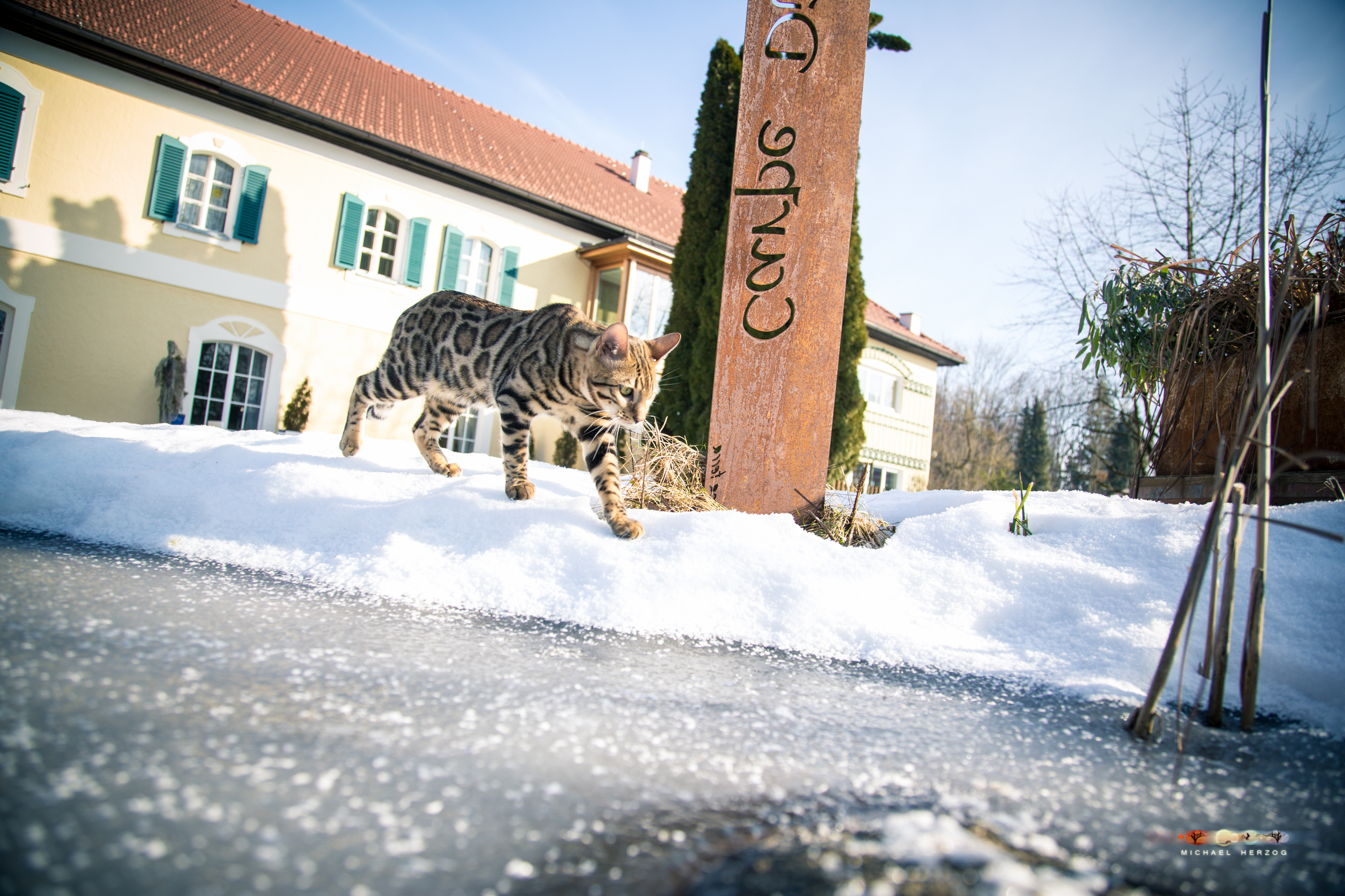 BALUARI_Winter2019_Garten_MichaelHerzog-8604.jpg