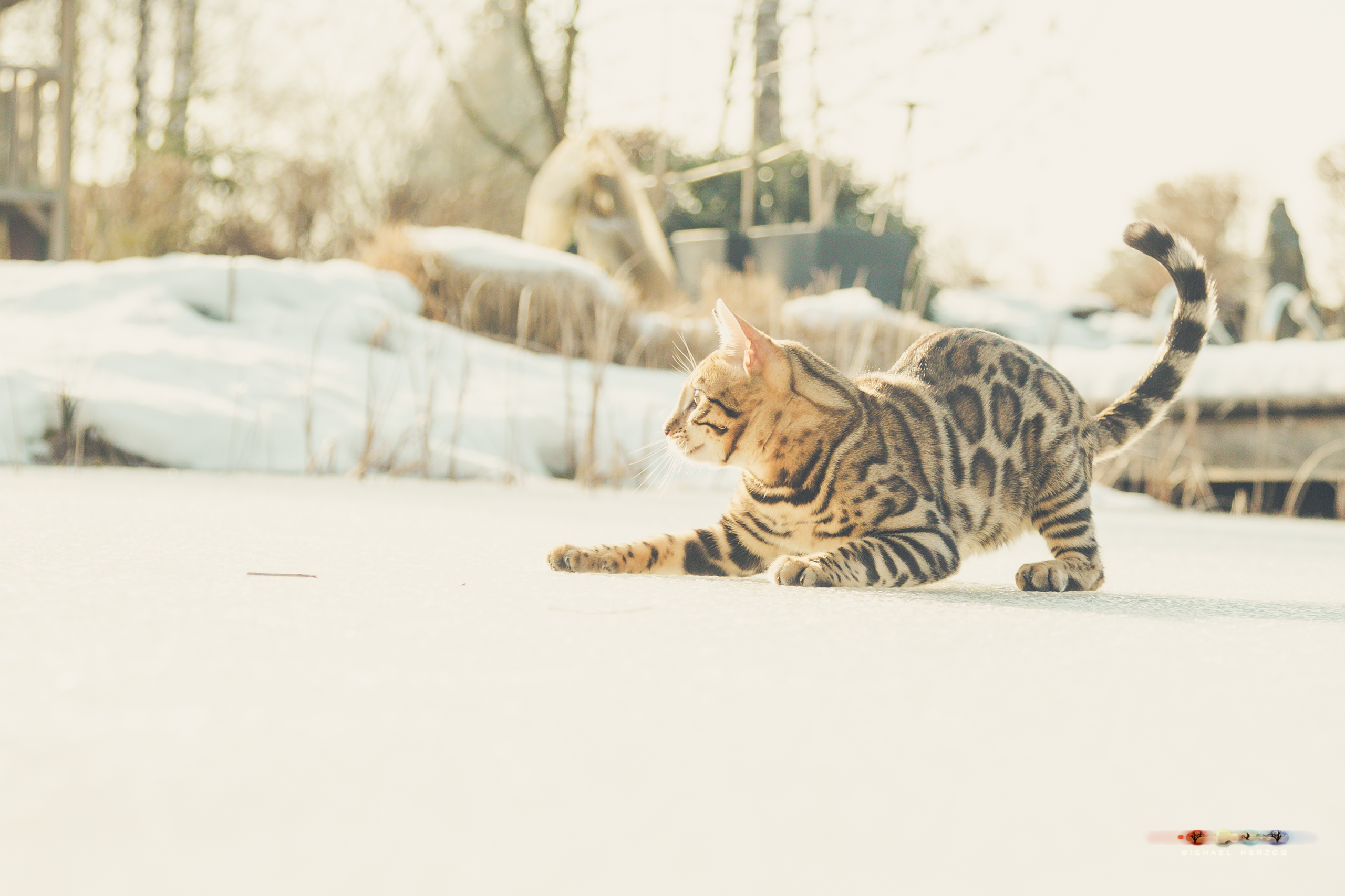 BALUARI_Winter2019_Garten_MichaelHerzog-8981.jpg