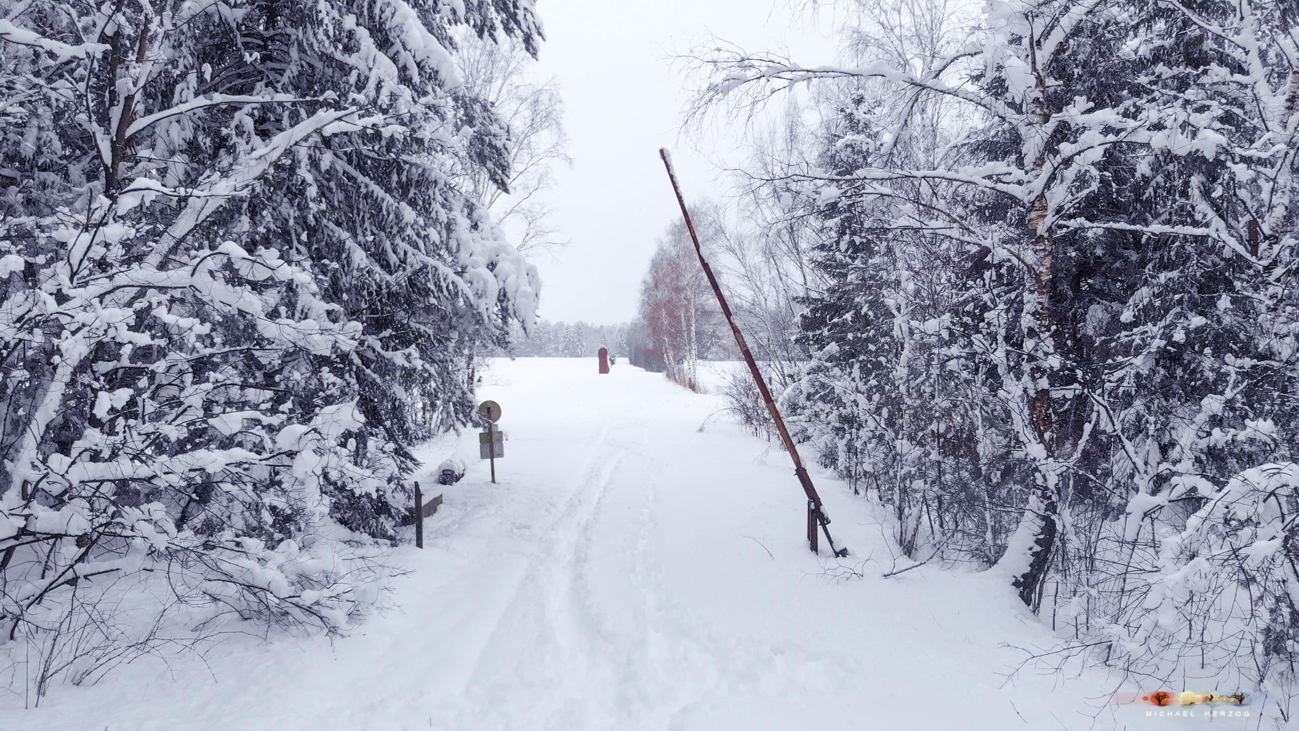 Weidmoos_Winter2018-19_Screenshot_MichaelHerzog-16-3.jpg