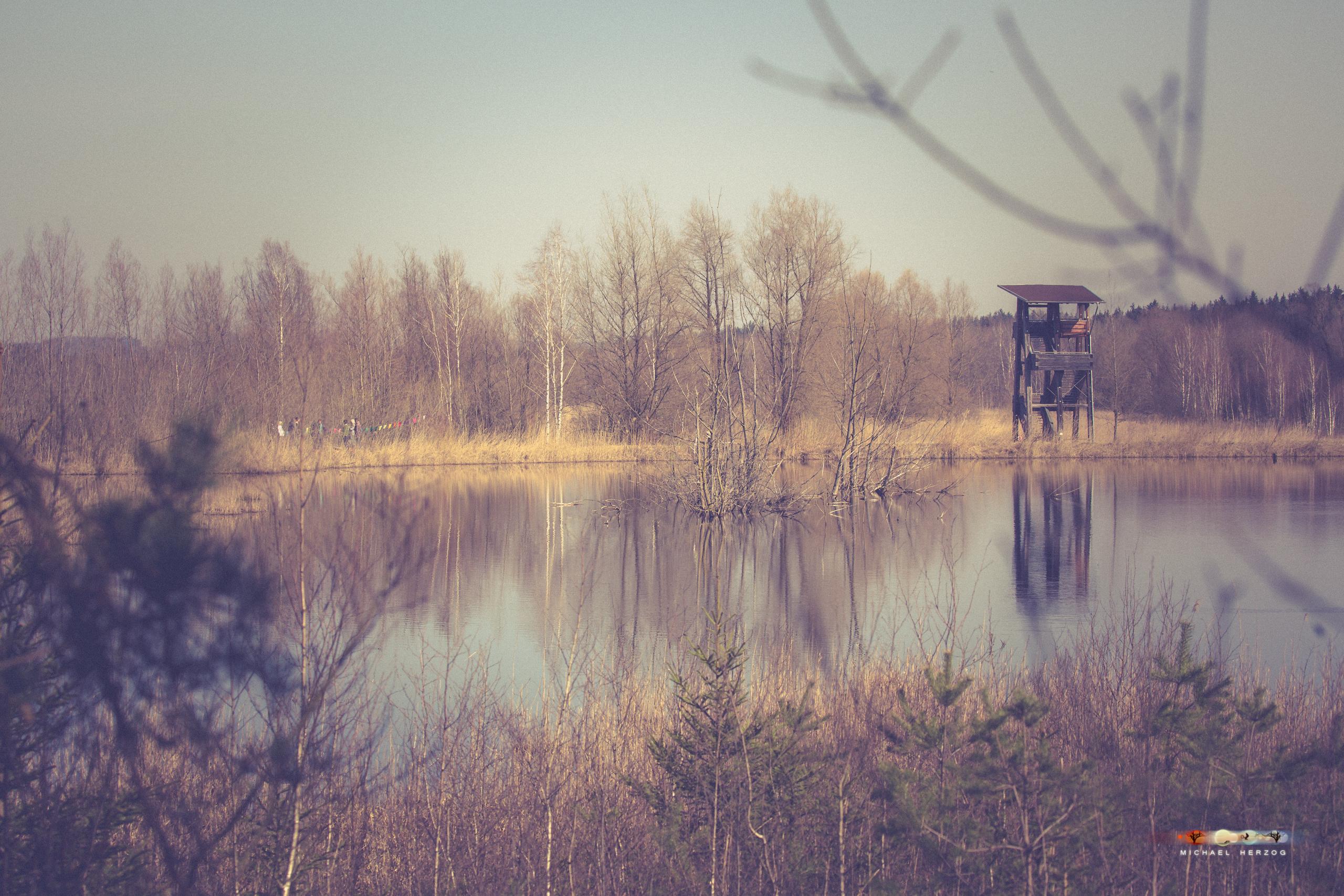 AnnaWieser_Frühlingsritual_Weidmoos_2019_März_MichaelHerzog-0318.jpg